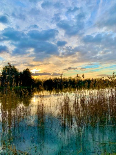 Coucher de soleil sur les étangs d'Aubigny