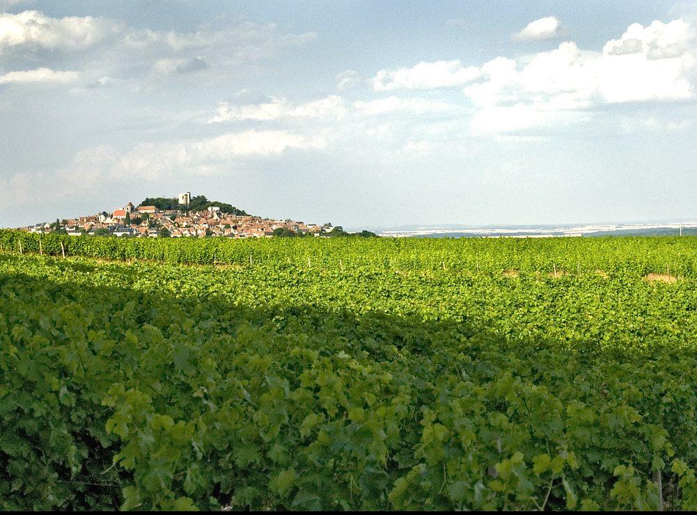 Clip touristique du Pays Sancerre-Sologne